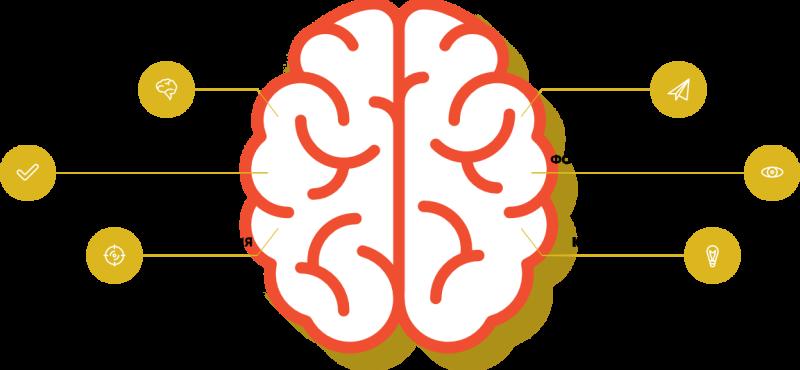 Развитие интеллекта ребенка с помощью ментальной арифметики