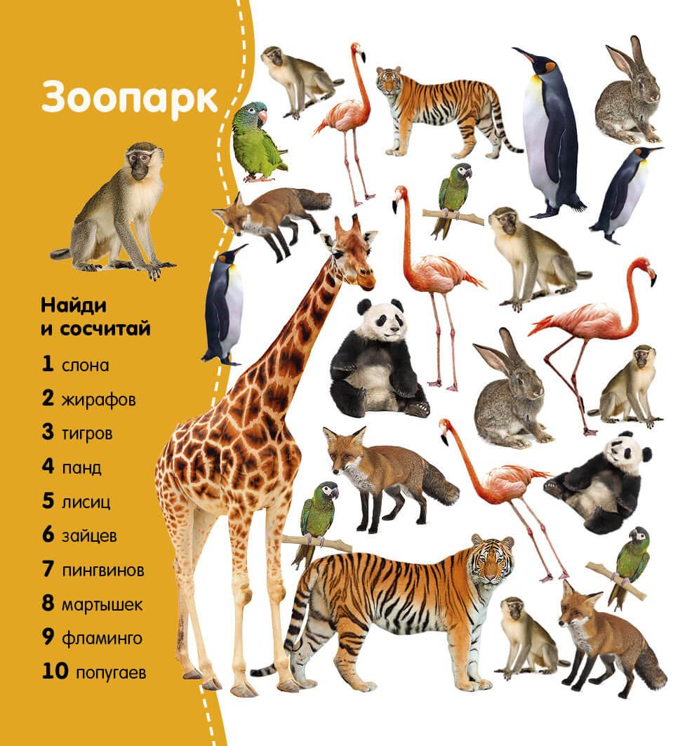 Математика в зоопарке